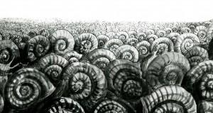 Le court-métrage Science-fiction du jeudi #14 : « Les escargots » un classique de René Laloux et Roland Topor