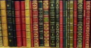 1er Salon du Livre Ados et Jeunes Adultes de Lyon 3ème, ce samedi 2 et dimanche 3 février 2013