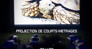 Appel à films & Prochaine Soirée VHS le Jeudi 20 octobre à la MJC Monplaisir